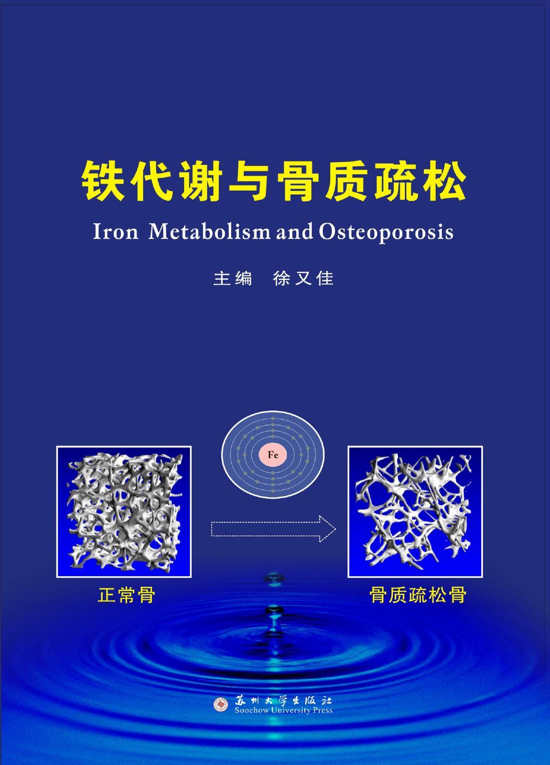 铁代谢与骨质疏松