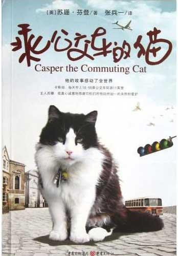 乘公交车的猫