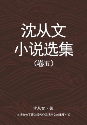 沈从文小说选集(卷五)