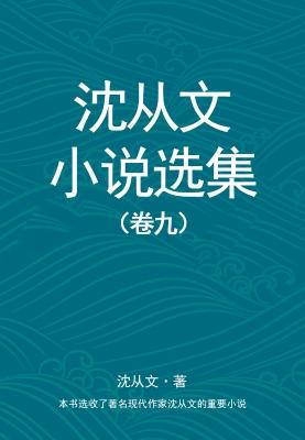 沈从文小说选集(卷九)